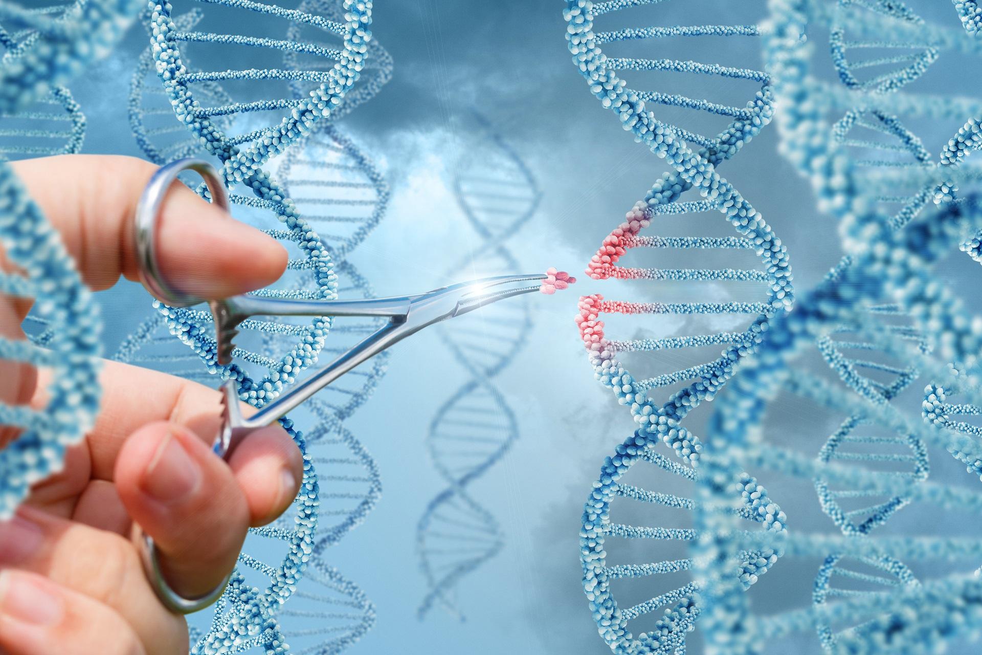 Terapia gênica e o tratamento para doenças genéticas