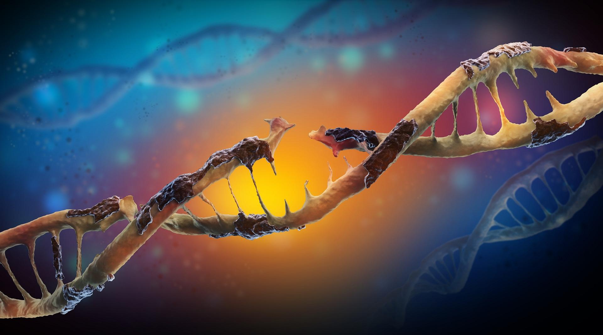 Mutação genética missense sentido trocado deleção inserção frameshift expansão de tripletos mutações genéticas sequenciamento completo do exoma genoma