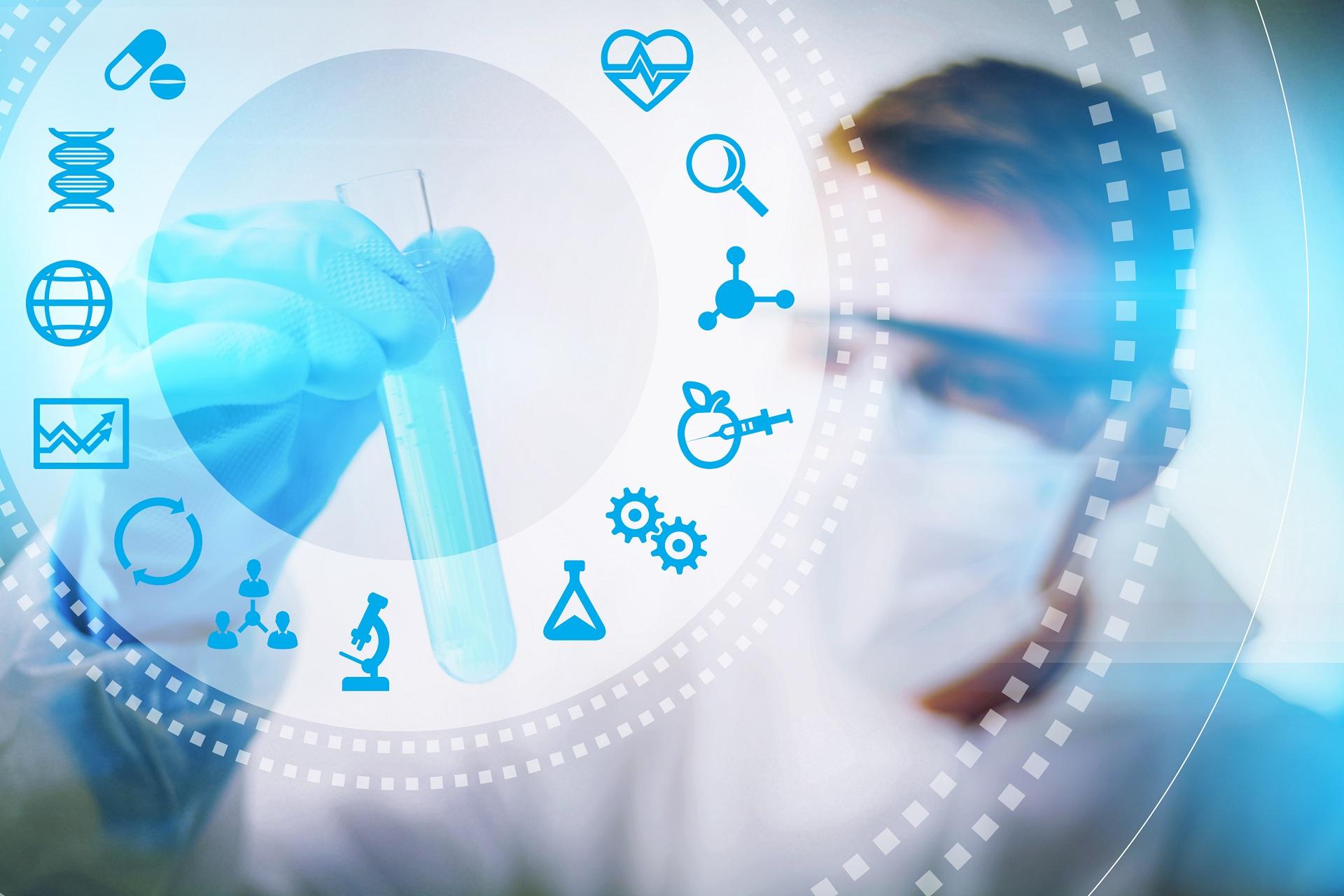 Quais são os princípios da bioética?